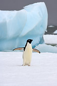 BRD 05 SK0073 01
