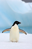 BRD 05 SK0074 01
