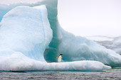 BRD 05 SK0078 01