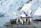 BRD 05 TL0001 01