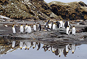BRD 05 TL0002 01