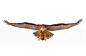 BRD 07 RK0025 09