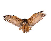 BRD 07 RK0026 03