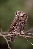 BRD 07 RK0029 02