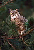 BRD 07 RK0060 06