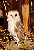 BRD 07 TL0004 01