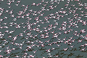 BRD 11 MH0027 01