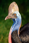 BRD 13 TK0005 01