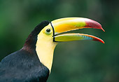 BRD 17 MH0001 01