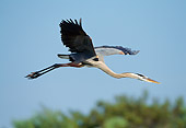 BRD 23 TK0001 01