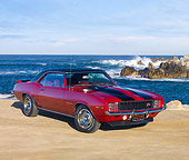 CAM 01 RK0175 01