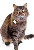 CAT 01 RK0096 03