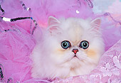 CAT 01 RK0324 04