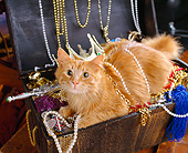 CAT 01 RK0400 05