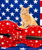 CAT 01 RK0413 06