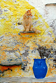 CAT 01 KH0015 01