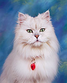 CAT 01 RK0079 01