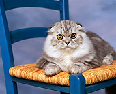 CAT 01 RK0276 01