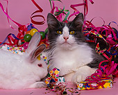 CAT 01 RK0401 06