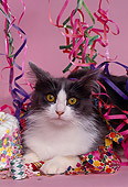 CAT 01 RK0403 01