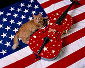 CAT 01 RK0410 02