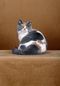 CAT 02 CH0064 01