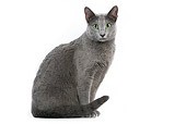 CAT 02 JE0025 01