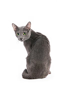 CAT 02 JE0026 01
