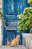 CAT 02 JE0343 01