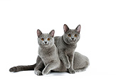 CAT 02 JE0405 01