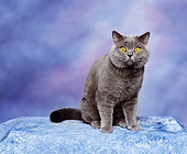 CAT 02 RK0647 01