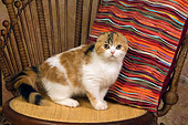 CAT 02 RK1401 01