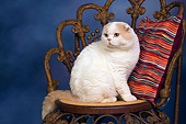 CAT 02 RK1415 01