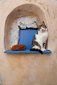 CAT 02 KH0133 01