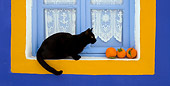 CAT 02 KH0166 01
