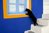 CAT 02 KH0167 01