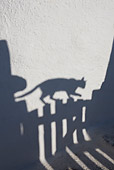 CAT 02 KH0180 01