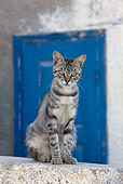 CAT 02 KH0187 01