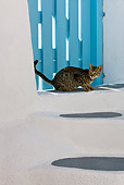 CAT 02 KH0199 01