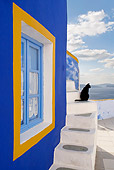 CAT 02 KH0272 01