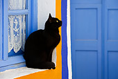 CAT 02 KH0273 01