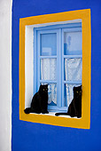 CAT 02 KH0274 01