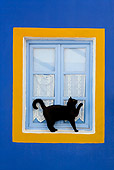 CAT 02 KH0276 01