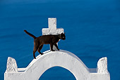 CAT 02 KH0285 01