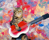 CAT 02 RK0262 02