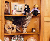 CAT 02 RK0570 10