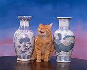 CAT 02 RK0715 10