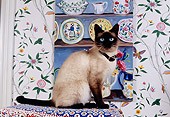 CAT 02 RK1135 04