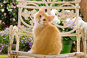 CAT 03 JE0057 01