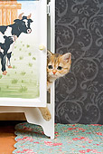 CAT 03 JE0132 01